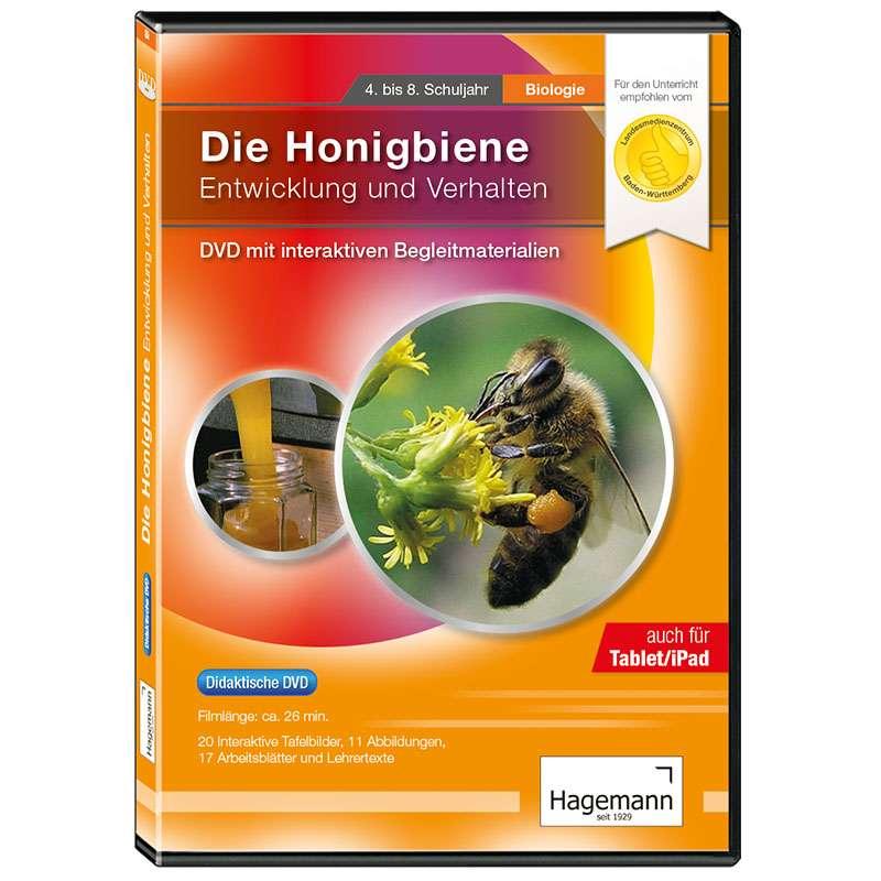 Didaktische DVD Die Honigbiene - Entwicklung und Verhalten ...