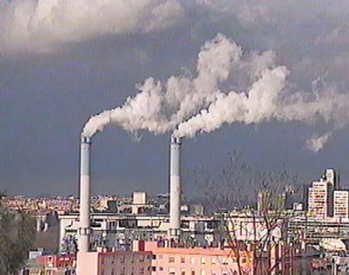 DVD-Lehrfilm Kohlenstoff - Ein natürlicher Kreislauf