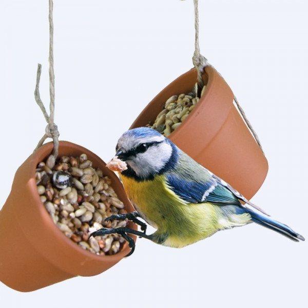 Vogelfutter Bastelset (Klassensatz)