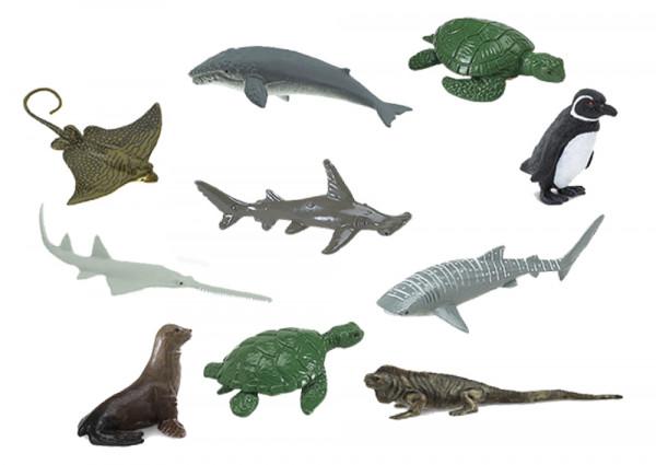 Kleine gefährdete Meerestiere, 10-tlg.