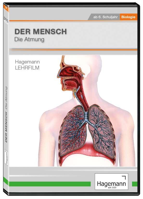 Berühmt Menschliche Anatomie Und Physiologie Dvd Galerie ...