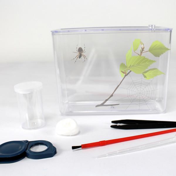 Spinnen-Beobachtungsset