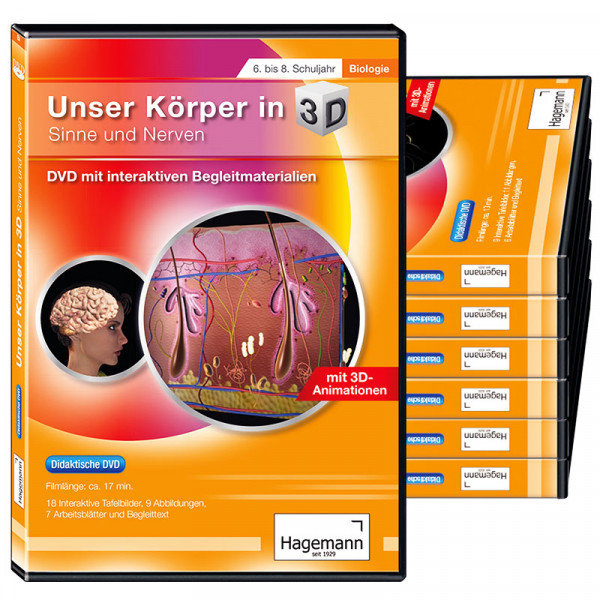 "Themenpaket ""Unser Körper in 3D"" (tabletfähig)"
