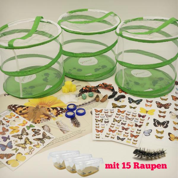 Hagemann Gruppen-Projekt-Set Schmetterlinge