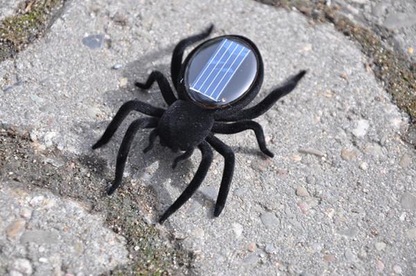 Solar-Spinne