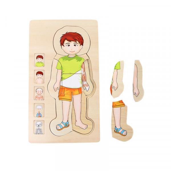 Körperschichten Puzzle Junge (28-tlg.)