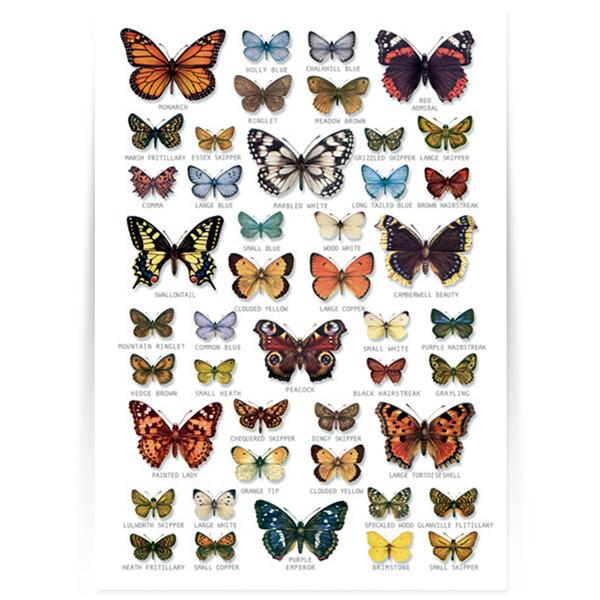 Hagemann Bestimmungstafel Schmetterlinge