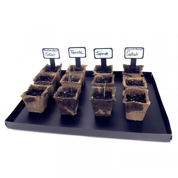 Gemüse-Zuchtset (Klassensatz)