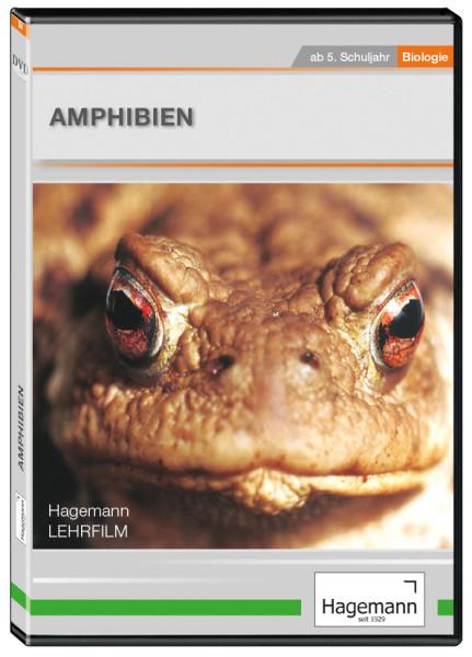 DVD-Lehrfilm Amphibien