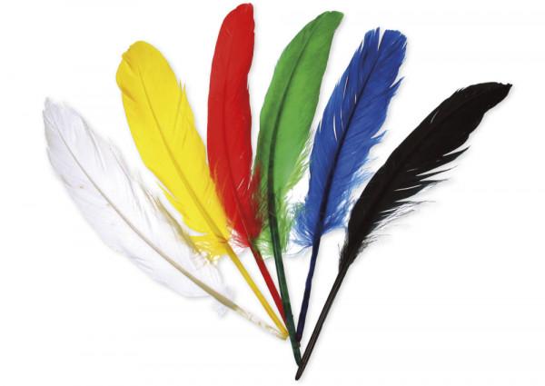 Große Federn in 6 Farben, 17 Stück
