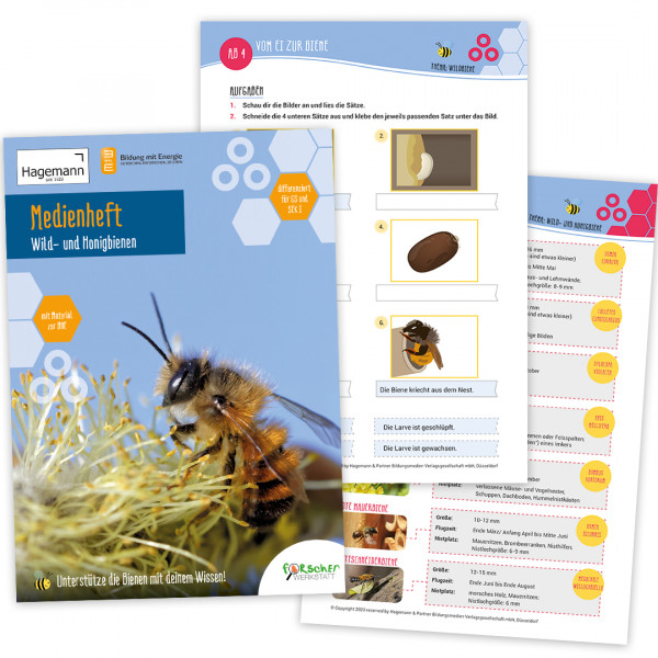 Medienheft Wildbienen und Honigbienen