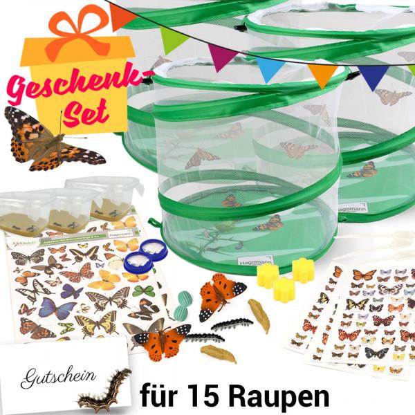 Geschenkset Gruppenprojekt Schmetterlinge