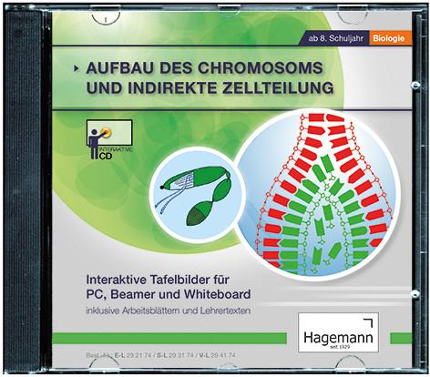 Einsteiger-Version Chromosomen und indirekte Zellteilung