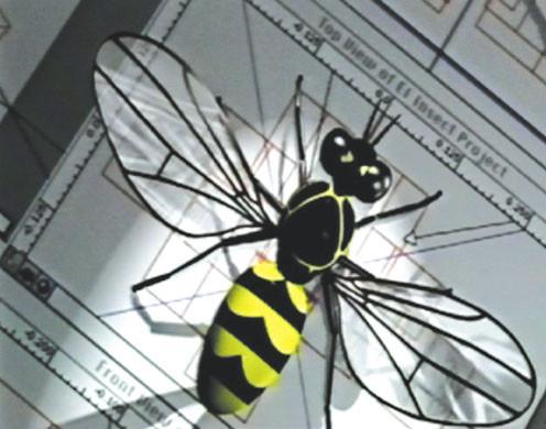 DVD-Lehrfilm Die faszinierende Welt der Insekten
