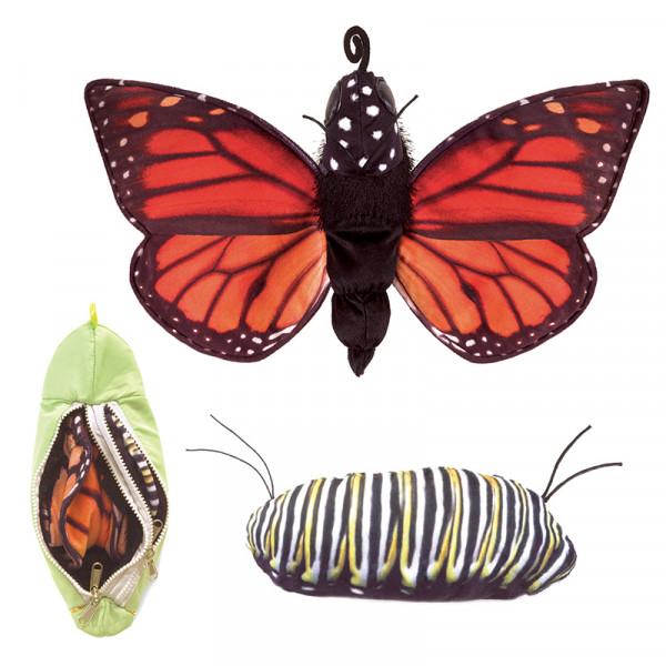 Wendepuppe: Lebenszyklus Schmetterling