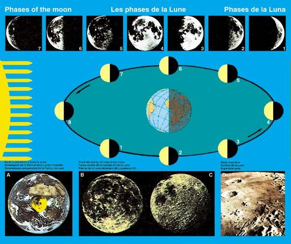 Lehrtafel Mond und Bewegungen